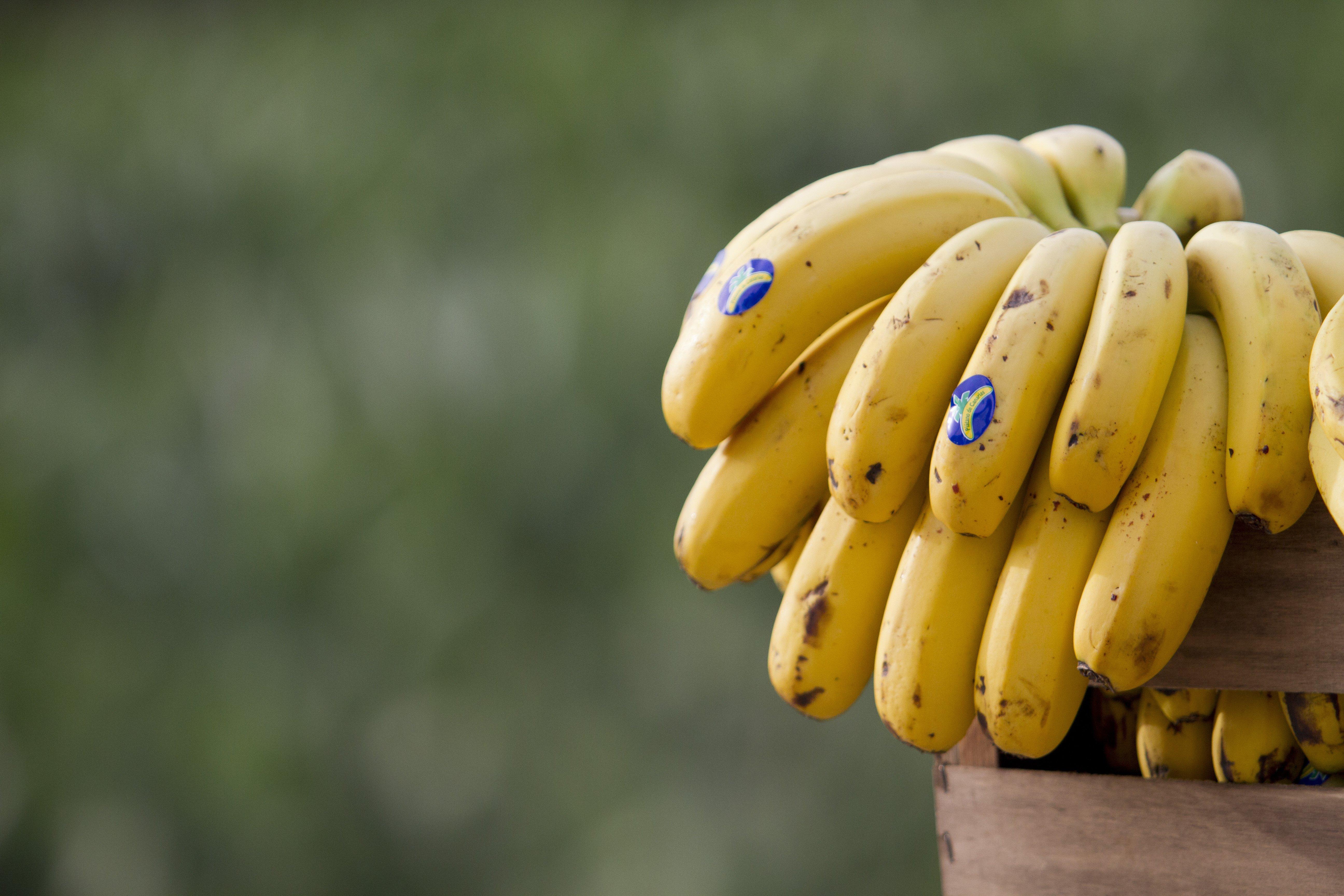 Plátano de Canarias, un superalimento muy saludable