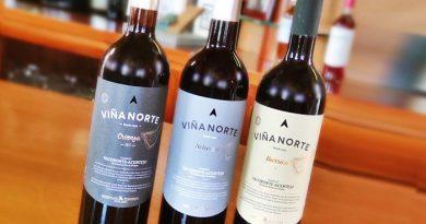 Nuevos vinos tintos de Viña norte